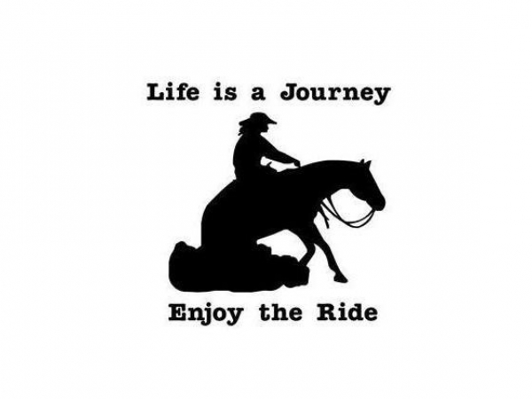 Life is a Journey Enjoy The Ride Lady Reining Horse Decal Vinyl Trailer Mirror W