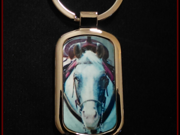 Horse photo keychain
