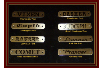 Custom Horse Halter / Dog Collar Brass Plate w Chicago Screws